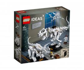 Конструктор ЛЕГО Ideas 21320