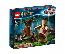 Конструктор ЛЕГО Harry Potter 75967