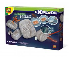 Светещи вкаменелости СЕС