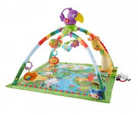 Активни гимнастики Fisher Price Играчки за новородени DFP08