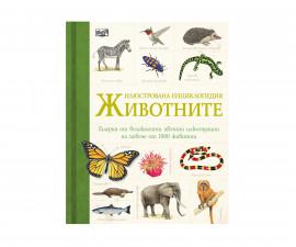 Енциклопедии Издателства Издателство Фют 3502-562