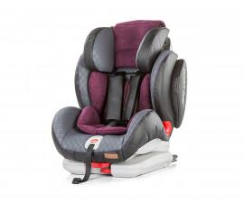 Столчета за кола 9-36 кг. Chipolino STKNO0184VB
