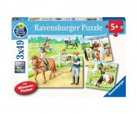 Ravensburger 05129 - Детски пъзел 3х49 ел. - Един ден при конете