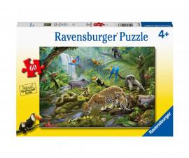 Ravensburger 05166 - Детски пъзел 60 ел. - Животни от дъждовните гори