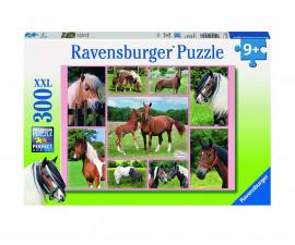 Пъзели Ravensburger Пъзели за възрастни 13174
