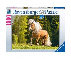 Пъзел за възрастни Ravensburger 1000 ел. - Галопиращ кон