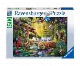 Пъзел за възрастни Ravensburger 1500 ел. - Необезпокоявани тигри