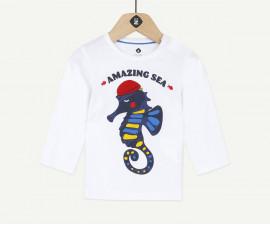 Детска блуза с дълъг ръкав Z 1Q10210-01, момче, 3-36 м.